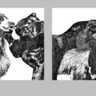 Animal Study For A Marriage / 2012